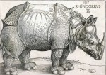 Albrect Dürer (1471-1528), The Rhinoceros